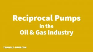 Reciprocal Pumps in the Oil Gas Industry